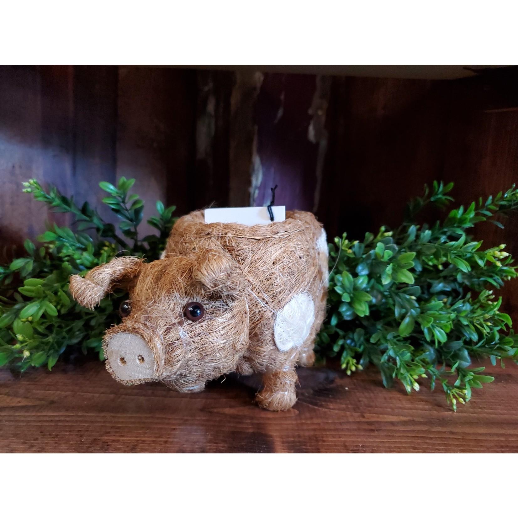 LIKHA Baby Pig Planter