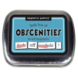 OBSCENITIES WORD MAGNETS