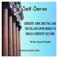 Consent, Kink and the Law Class Review