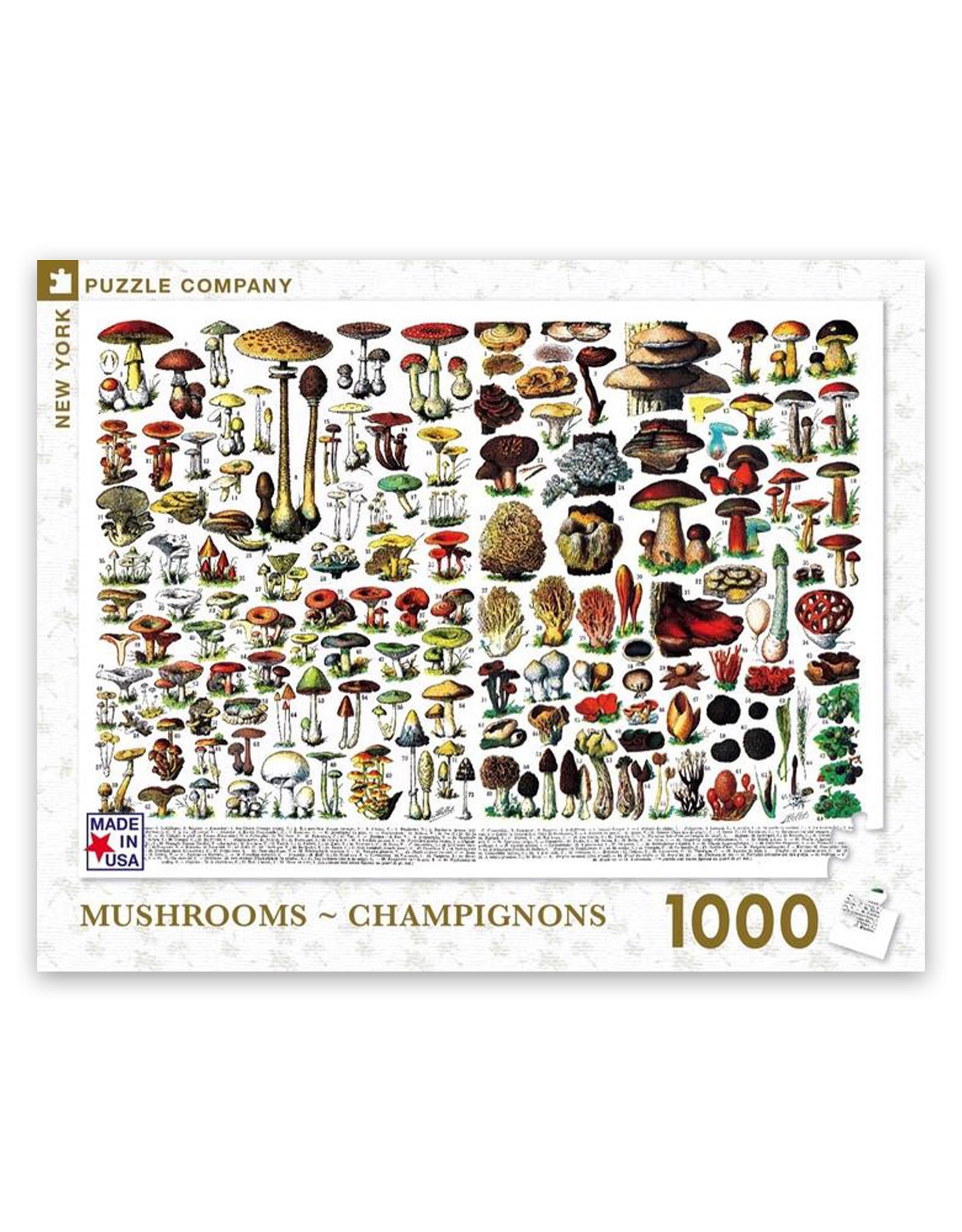 Puzzle Mushroom Champignons