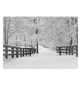 Winter Tracks Boxed Cards