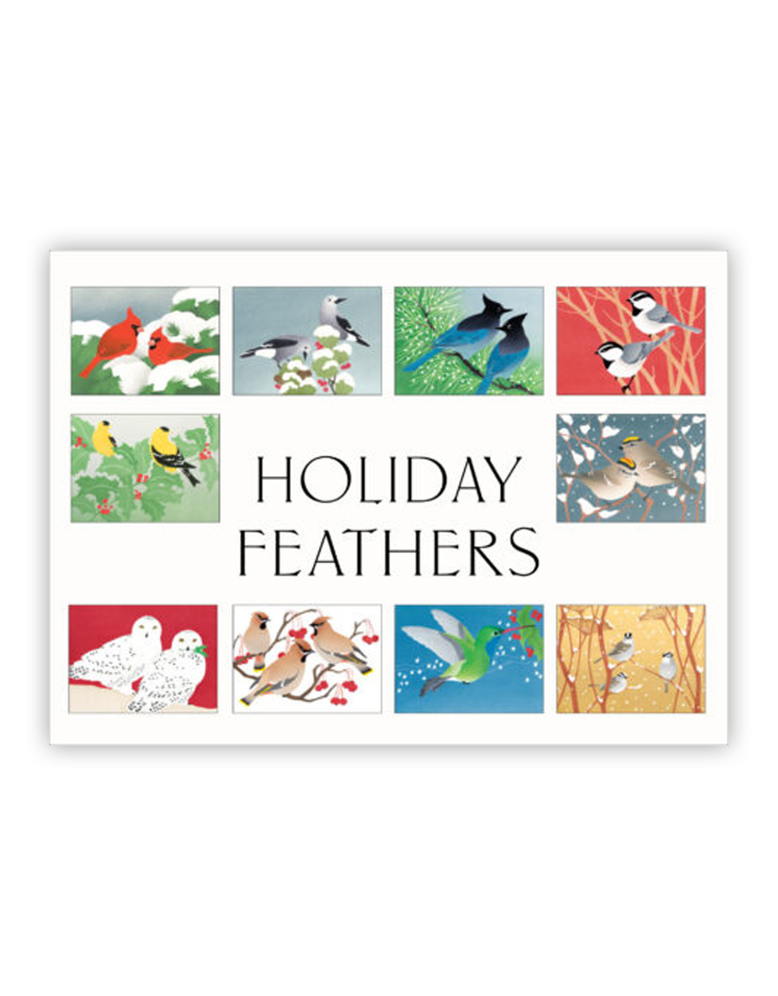 Boxed Cards Holiday Feathers