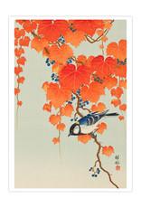 Boxed Cards Ohara Shoson