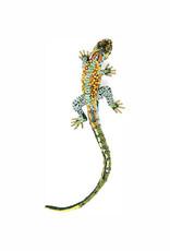 Caiman Lizard Brooch Pin