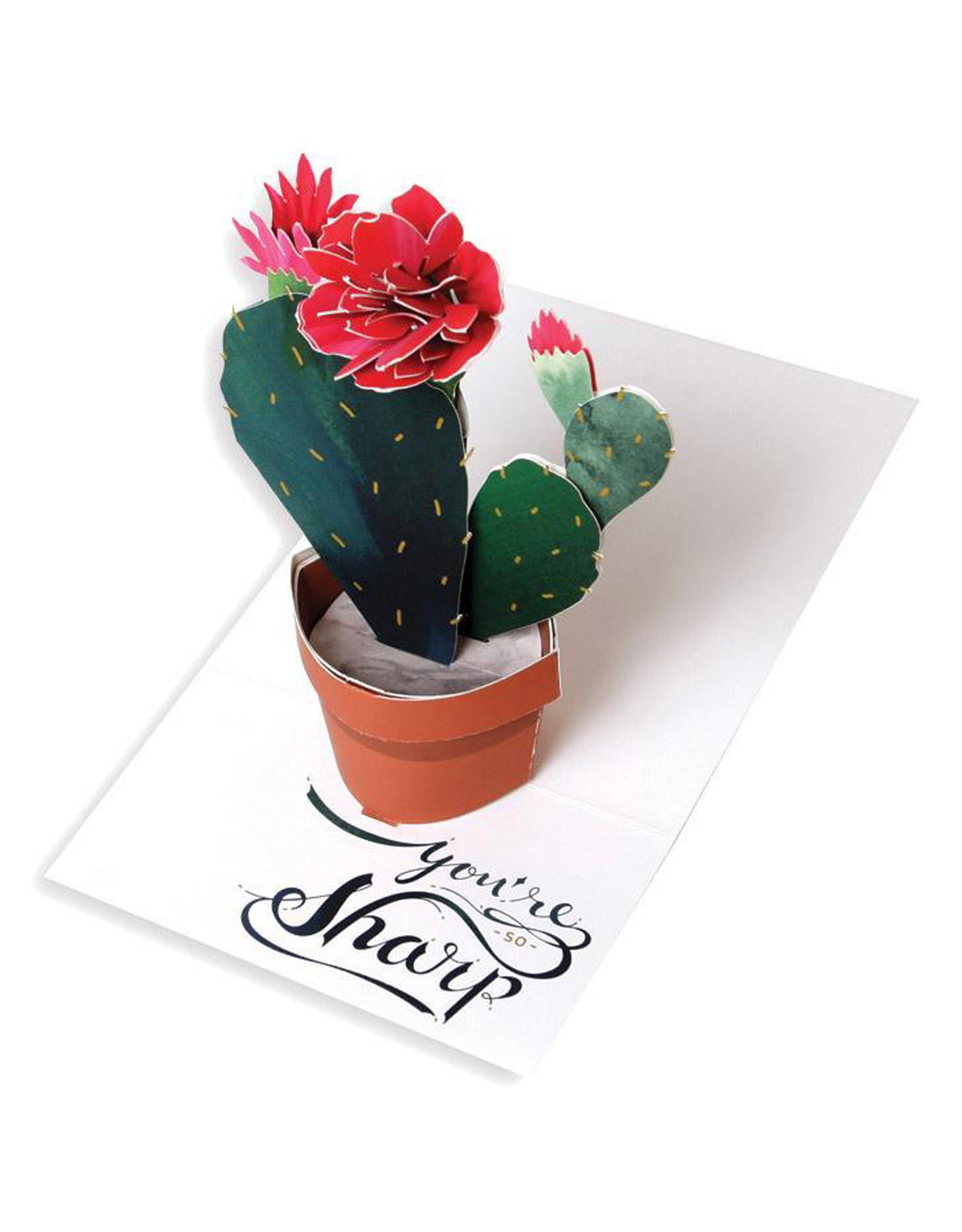 Cactus Pop-up Card