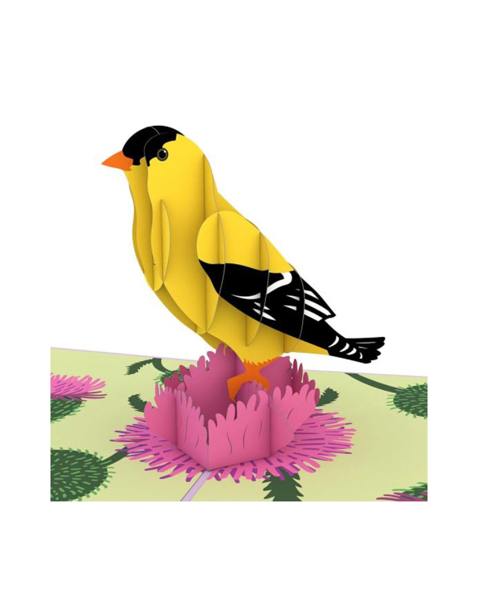 3D Popup Gold Finch Card