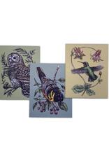 Bird Notes Notecards