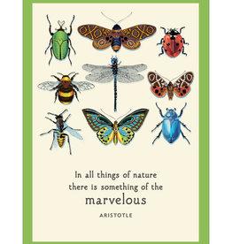 Bugs Birthday Card