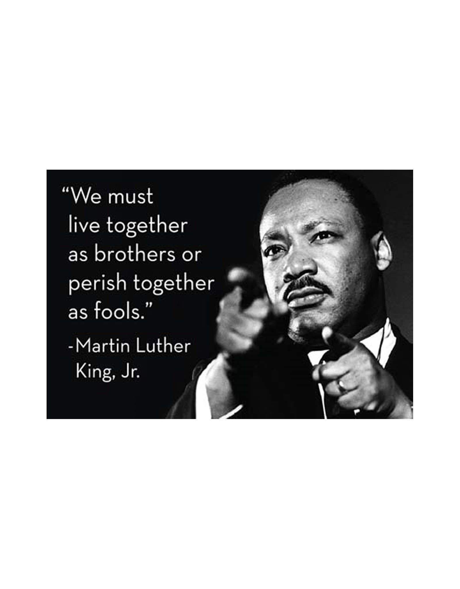 We Must Learn MLK Magnet