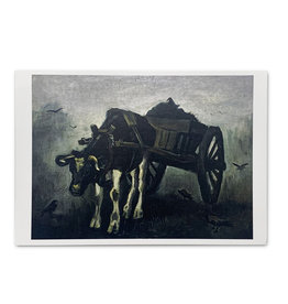 Ox Cart Postcard