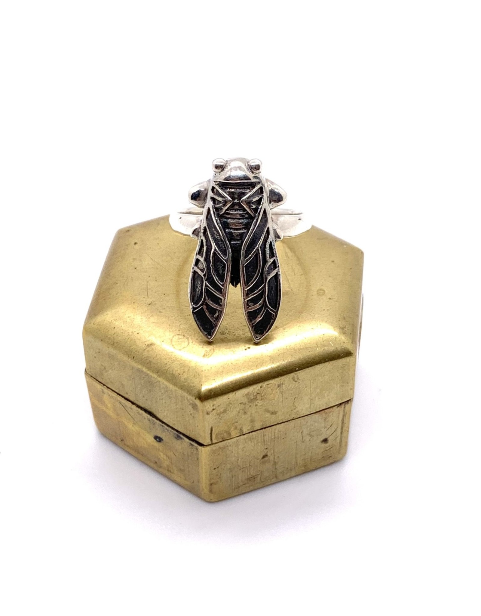 Cicada Ring