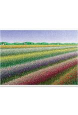 Rainbow Fields Thank You Card