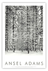 Pine Forest in Snow Poster