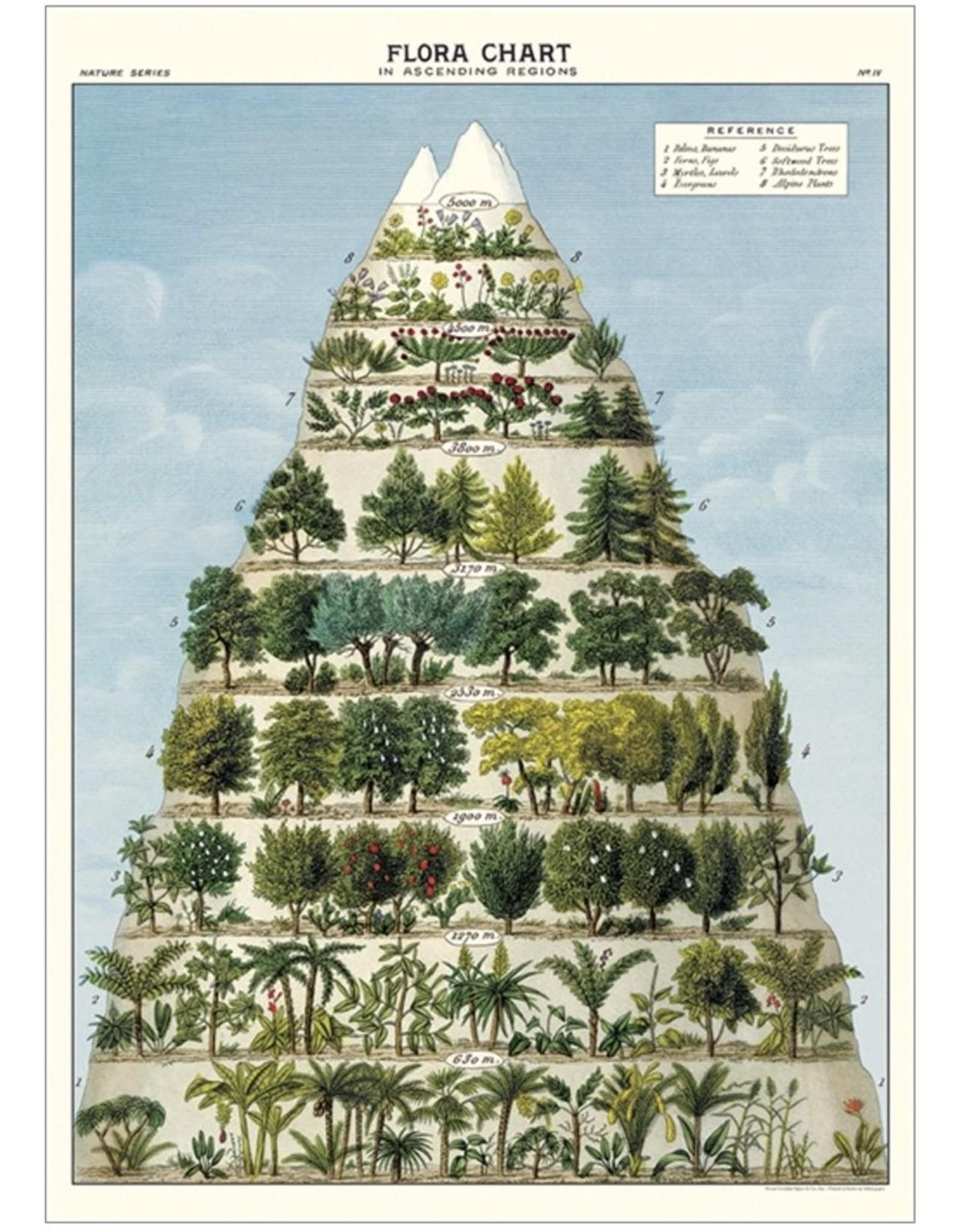 Flora Chart Poster Wrap