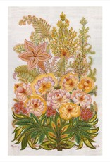 Flora Fantastica Boxed Cards