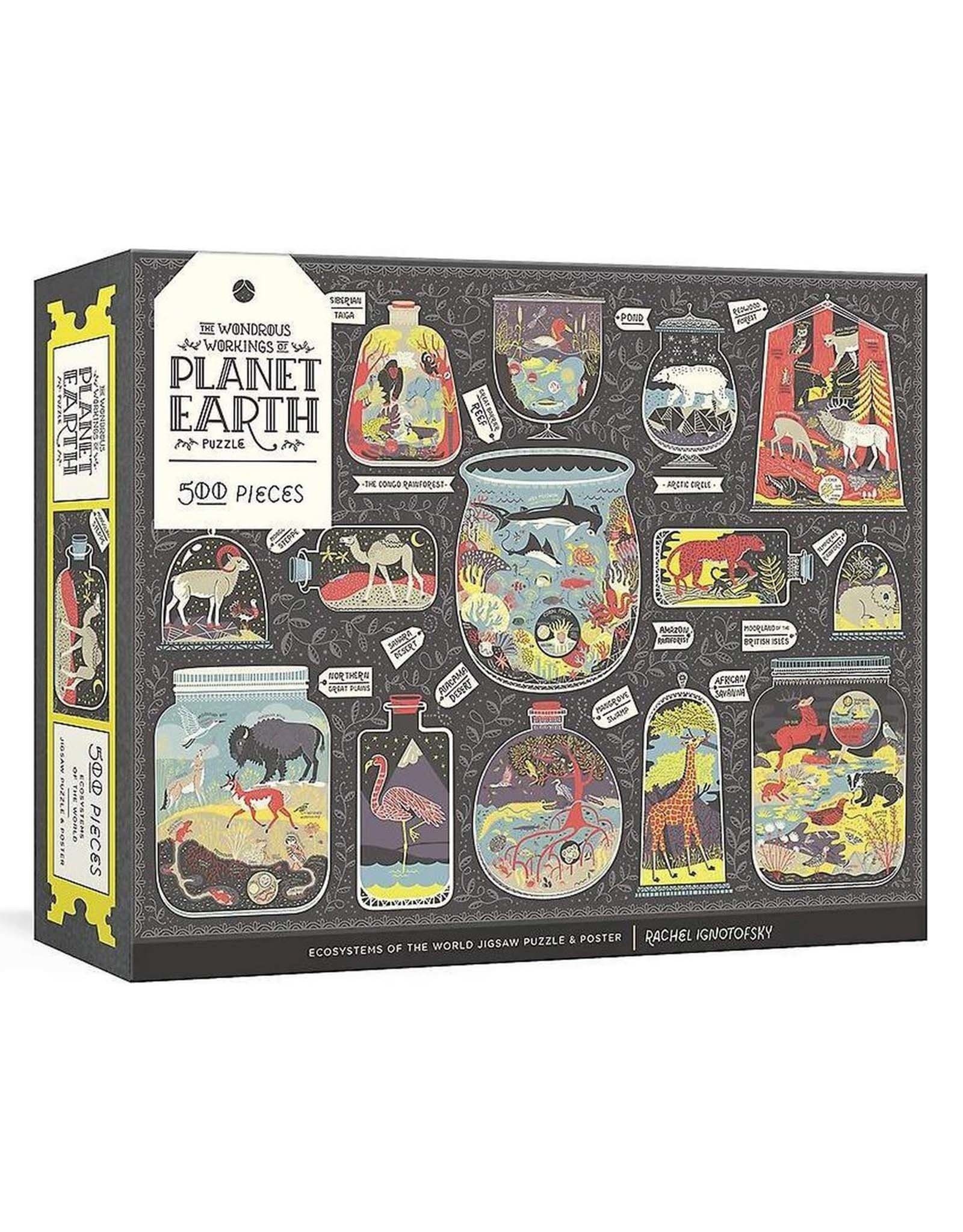 Wonderous Workings Of Planet Earth Puzzle