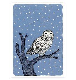 Wisdom Owl Boxed Cards