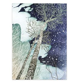 Snowy Birch Trees Boxed Cards