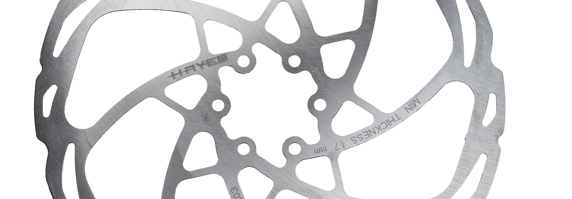Hayes D-Series Disc Brake Rotor - 203mm, 6-Bolt, Silver