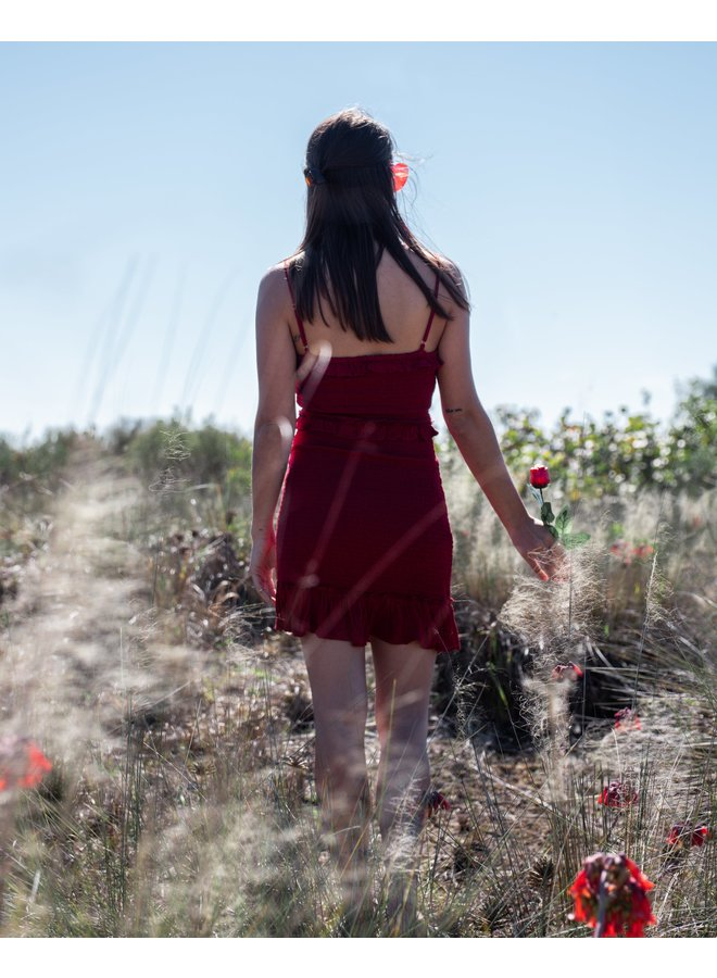Anna Red Smocked Mini Dress