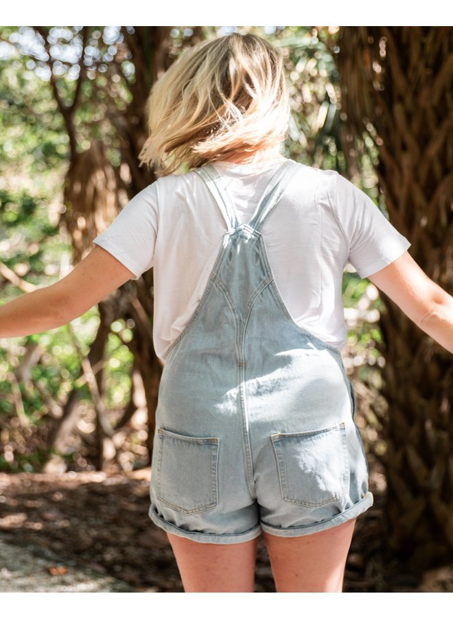 Sunny Days Denim Shorts Overalls