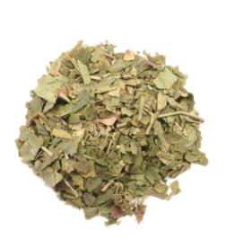 Ginkgo Leaf - Organic