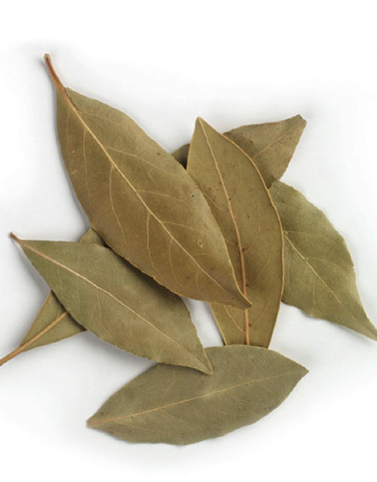 Bay Leaf - Organic