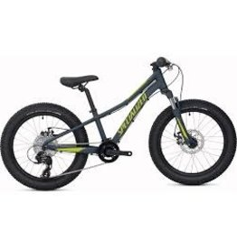Specialized  RIPROCK 20 CARBGRY/HYP/CLGRY 9