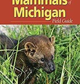 Field Guide Mammals of Michigan
