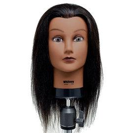"Celebrity Celebrity Whitney Manikin Up to 19"" 100% Brown Human Hair"