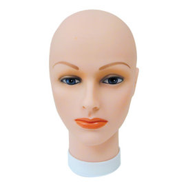 Celebrity Celebrity Bald Head Manikin
