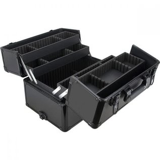 2-in-1 Smooth Rolling Beauty Hard Case