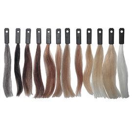 Celebrity Celebrity 100% Human Hair Color Testing Kit