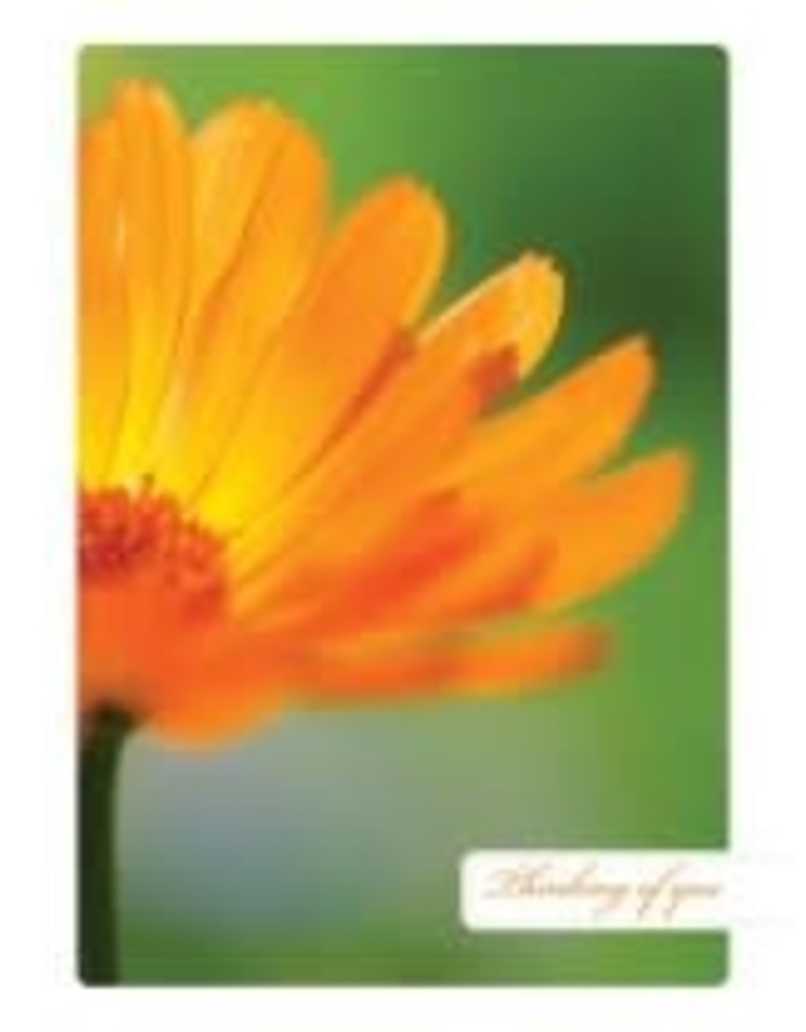 Tree - Free Greetings Bright Thoughts - Greeting Card