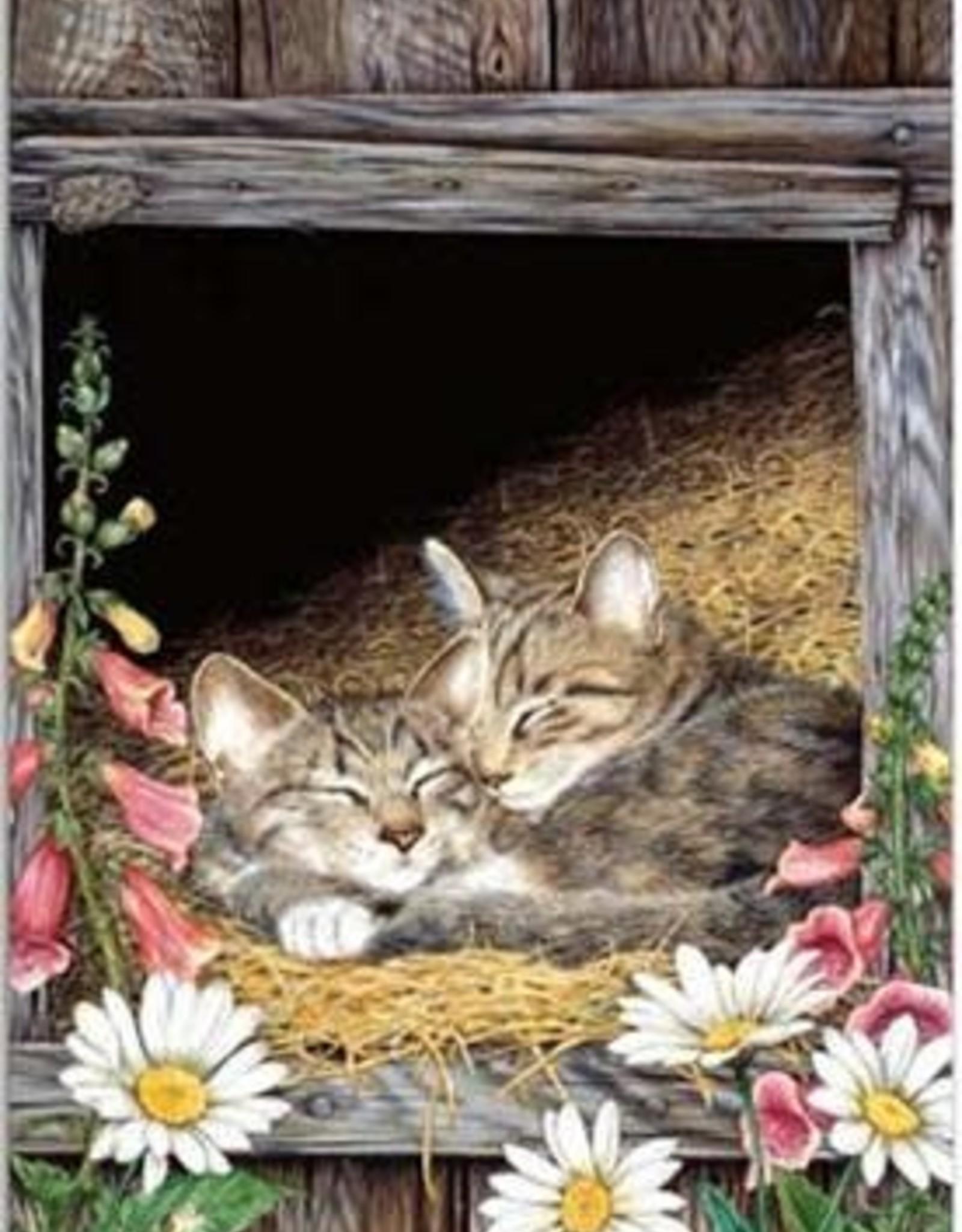 Tree - Free Greetings Barnyard Cats - Greeting Card