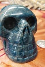 Apatite Skull 3.5in - $249