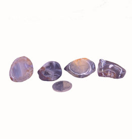Agate Geodes Tumbled $2