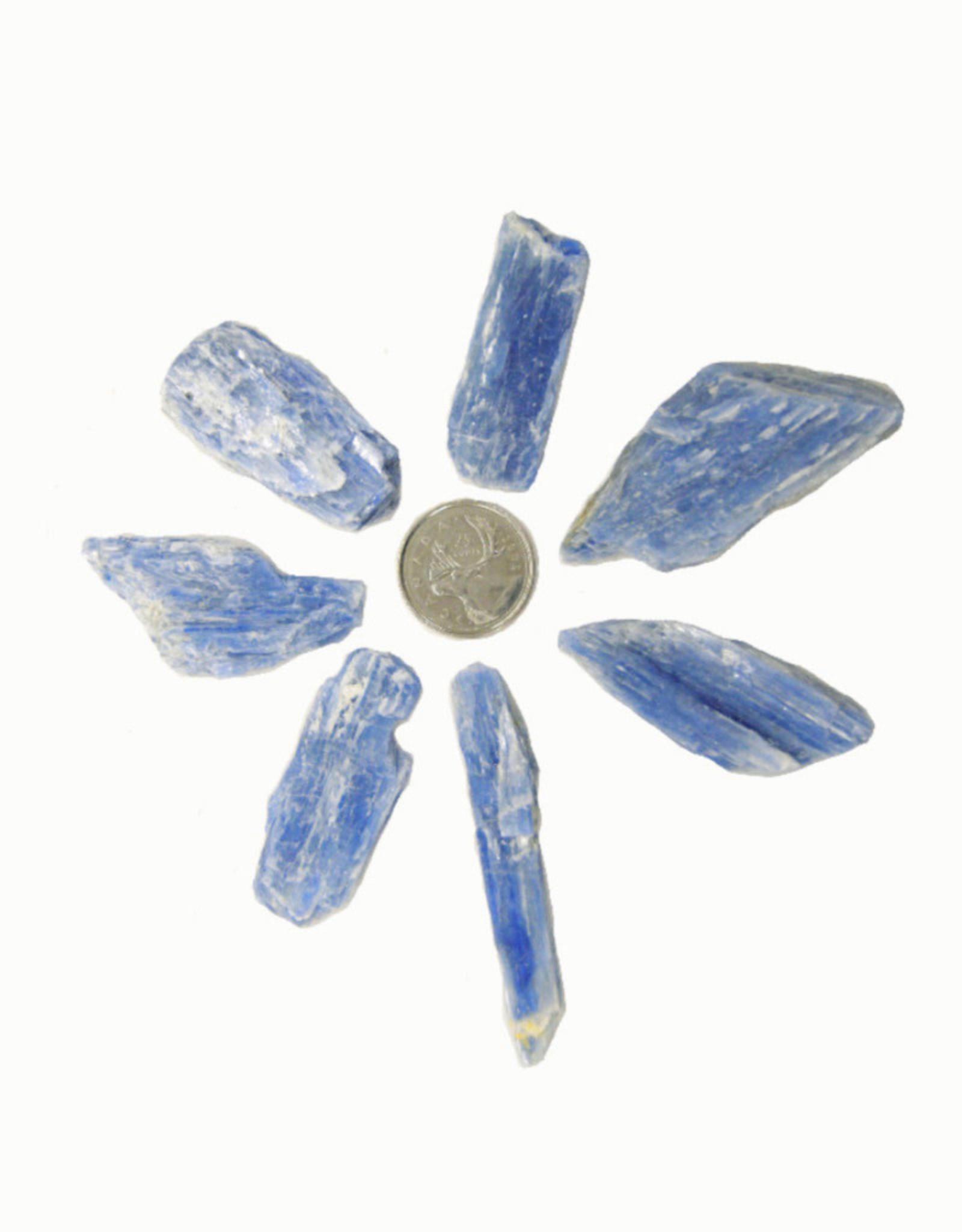 Blue Kyanite Blades Medium $2