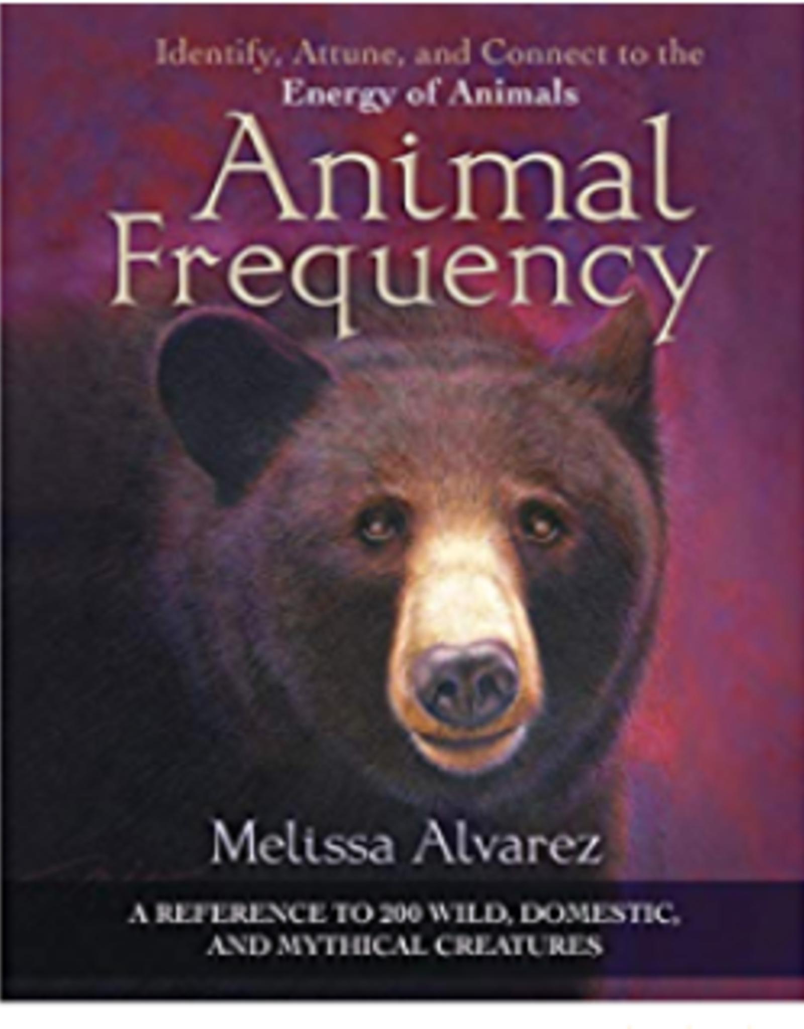 Melissa  Alvarez Animal Frequency by Melissa Alvarez