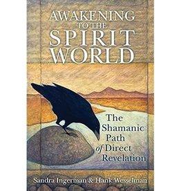 Sandra Ingerman Awakening to the Spirit World by Sandra Ingerman & Hank Wesselman
