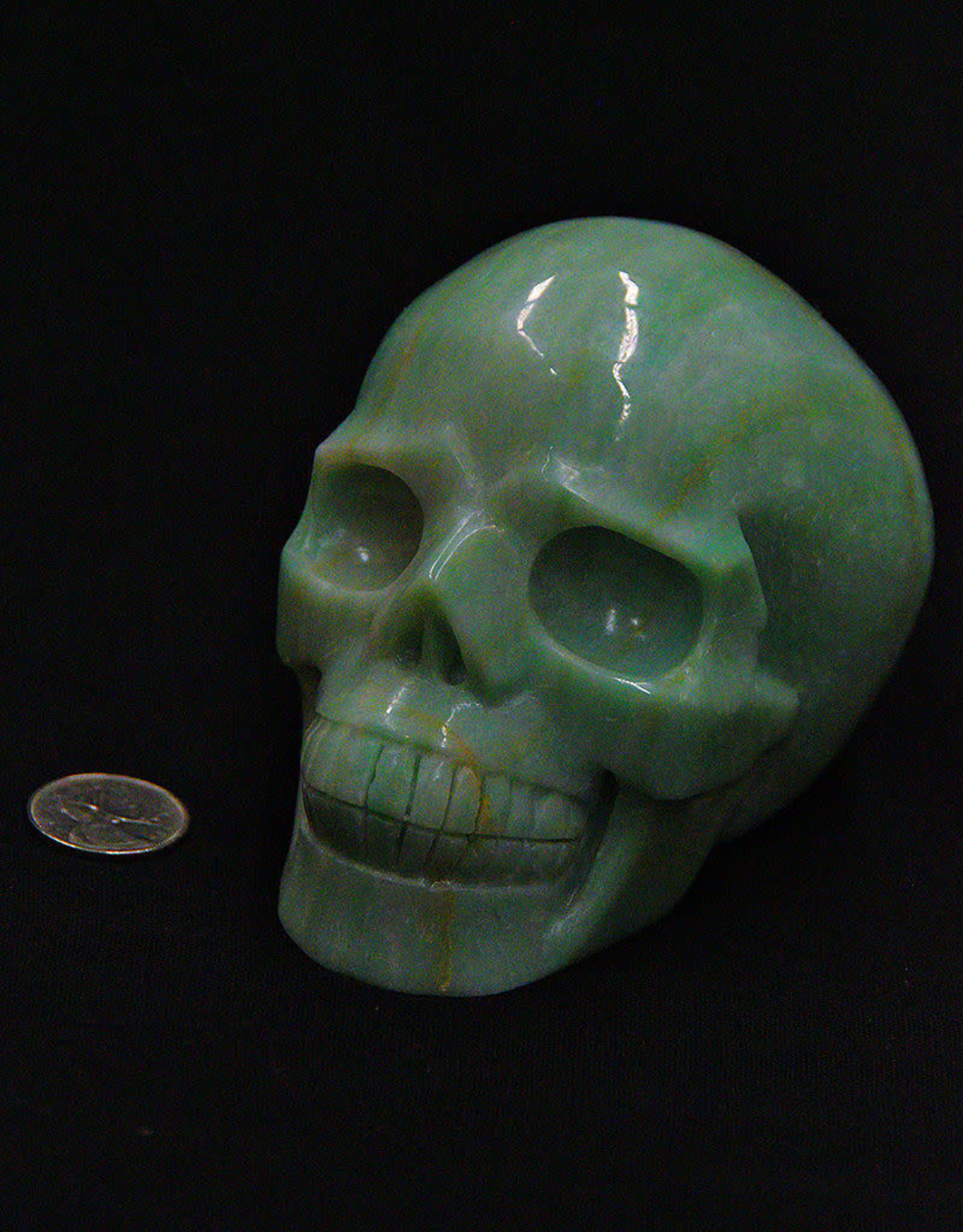 Amazonite Skull 5in