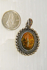 Baltic Amber C Pendant Sterling Silver