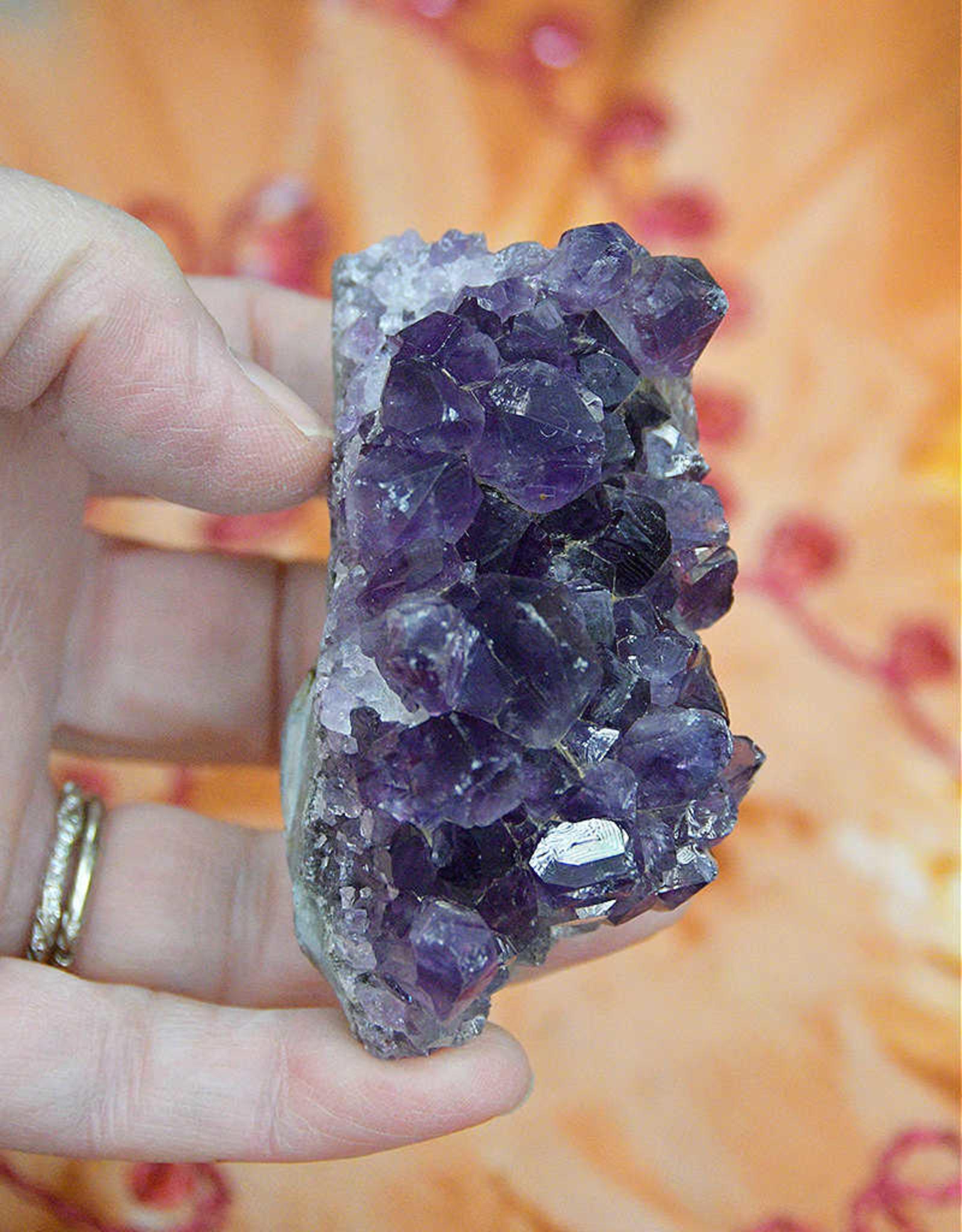 Amethyst Cluster from Uruguay $19