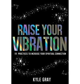 Kyle Gray Raise Your Vibration by Kyle Gray