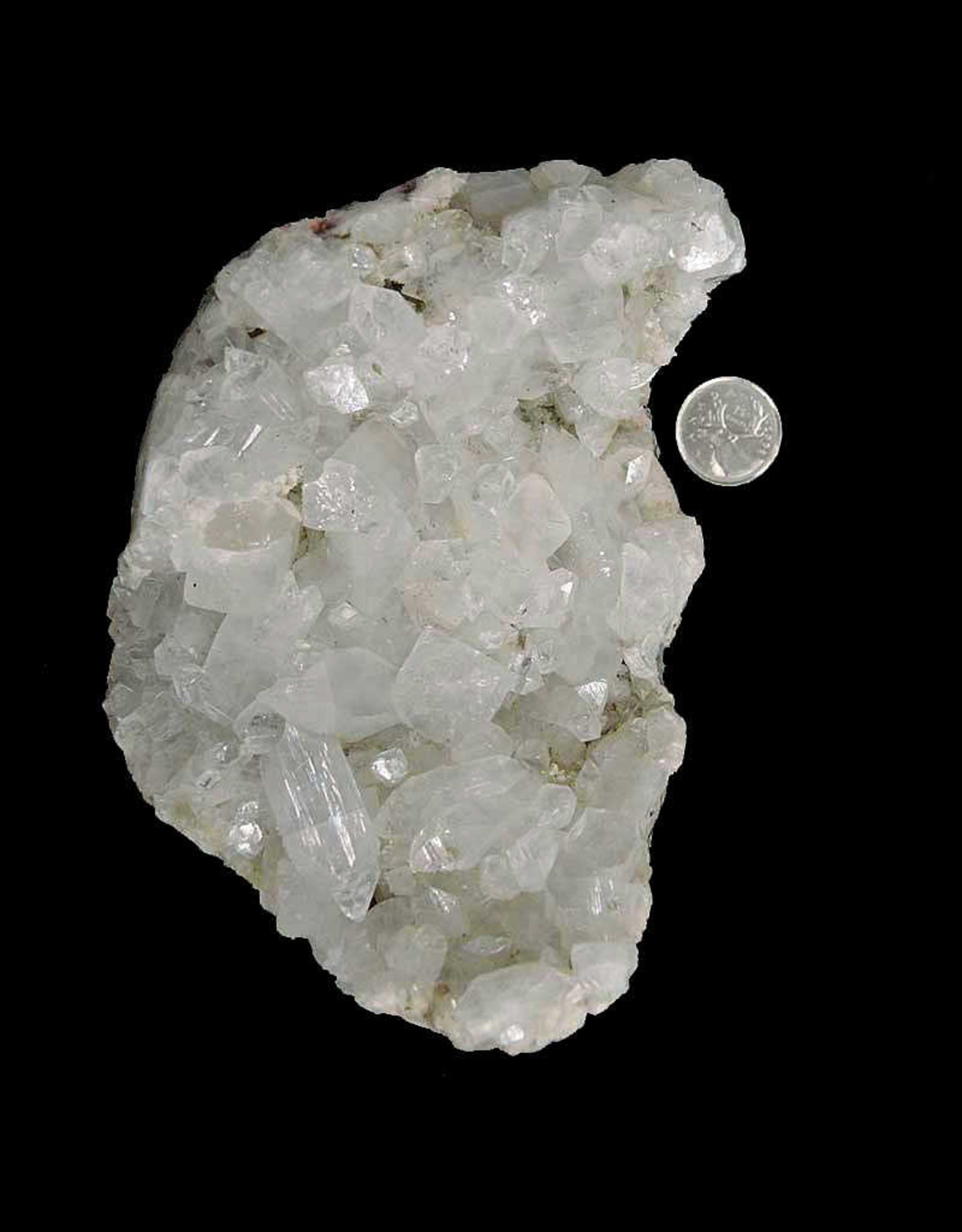 Apophyllite Cluster $49
