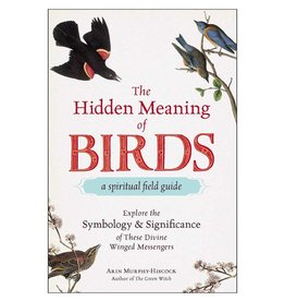 Arin Murphy - Hiscock The Hidden Meaning of Birds by Arin Murphy-Hiscock