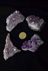 Amethyst Cluster $13