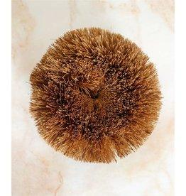 Round Coconut Scrubber