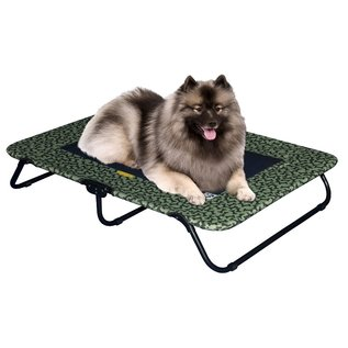 Pet Gear Designer Pet Cot - Small/Sage