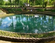 Pond / Outdoors